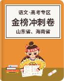 山东省、海南省 2020年 高考语文 金榜冲刺卷(解析版)