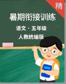 2020统编版语文五升六暑期衔接专题训练附答案