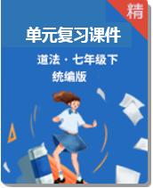 【单元复习】统编版道德与法治七下复习课件