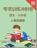 小学语文 小升初专项复习训练冲刺卷含答案