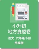 小学语文 统编版 2020年 小升初地方真题卷(含答案)