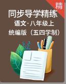 统编版(五四学制)语文八年级上册同步导学精练