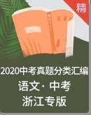 2020浙江省语文中考真题分类汇编(含解析)