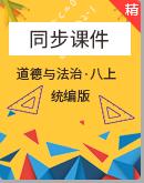 【2020秋】人教統編版道德與法治八年級上冊課件