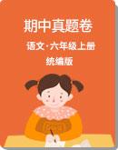 统编版 2019—2020学年 语文 六年级上册 期中真题卷(含答案)