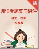 中考语文阅读专题复习课件