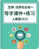 人教版(2019)高中生物学 选择性必修1 导学课件+练习(含解析)