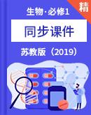 苏教版(2019)必修1生物同步精选课件