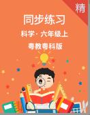 电子游艺开奖网站