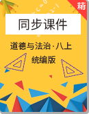 【2020秋】人教統編版道德與法治八年級上冊同步課件(含視頻素材)