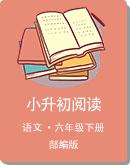 部編版六年級下冊語文教案-小升初閱讀(解析版)