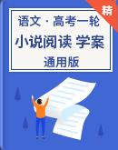 【备考2021】高考语文一轮复习 小说阅读 学案(通用版)