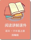 部編版 六年級上冊 語文 小升初閱讀各類體裁講解課件