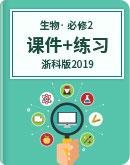 浙科版(2019)高中生物 必修2 課件+章節過關練習