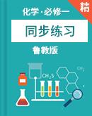 魯教版(2019)高中化學必修一同步練習