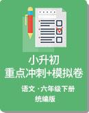 统编版 语文 小升初重点冲刺+模拟卷(学生版+教师版)