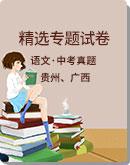 贵州、广西部分地区 2020年中考语文 精选专题试卷