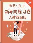 人教统编版历史 九年级上册 新考向多视角练习卷