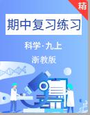 浙教版科学九年级上册期中复习练习