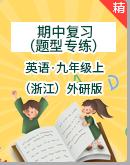 (浙江)外研版初中英语九年级上册期中复习(题型专练)(含解析)