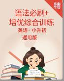 小升初英语语法必刷题+培优综合训练(含答案)