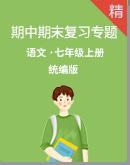 统编版语文七上期中期末复习专题 (课件+打印版+答案版)
