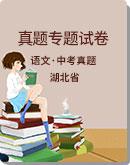 湖北省部分地區 2020年 中考語文 真題專題試卷(word含解析)