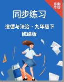 【2020年秋】统编版道德与法治九年级下册同步练习