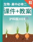 【新版原创】沪科版(2019)生物必修二同步课件+教案