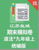 江苏盐城2020-2021学年第一学期道德与法治九上期末模拟试卷(word版,含答案)