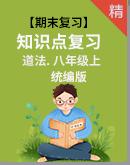 【期末复习】统编版道德与法治八年级上册知识点复习(课件+word知识点)