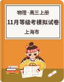 上海市2021届 高三上册 11月等级考物理 模拟试卷  PDF版含答案