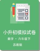 (苏教版)2021年小学六年级下册小升初数学模拟试卷(有答案)