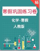 2020-2021学年人教版九年级化学全册寒假巩固练习卷(含答案)