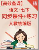 【高效备课】人教统编版语文七年级下册 同步课件+练习