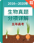 五年(2016-2020)高考生物真题分项详解(浙江选考)
