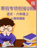 【寒假专项】统编版语文六年级 寒假专项衔接训练含答案