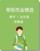 浙教版数学 2021年九年级 寒假作业精选( Word版含解析)