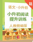 【小升初阅读提优】小学语文 小升初阅读专项技能提升训练试卷(含答案)