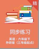 【随堂小练笔】外研版(三年级起点)六年级下册英语同步练习(含答案)