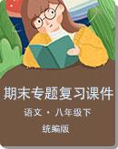 初中语文 统编版(部编版)八年级下册 期末专题复习课件