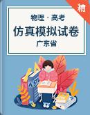 2021年广东省高考物理仿真模拟试卷(含答案及解析)