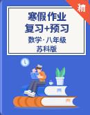 【寒假专区】苏科版数学八年级 寒假作业复习+预习