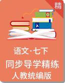 人教统编版语文七年级下册 同步导学精练(学案)
