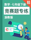 浙教版数学七年级下册 竞赛题专练