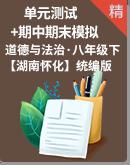 湖南省怀化市2021年八年级道德与法治下册单元测试卷+期中期末模拟卷(含答案)