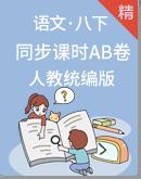 人教统编版语文八年级下册 同步课时练(A卷+B卷)