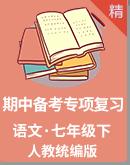 【期中备考】人教统编版语文七年级下册专项复习 试卷(含解析)