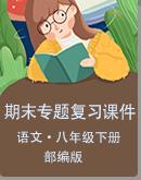 安徽省2021年春八年级语文下册部编版期末复习专题课件