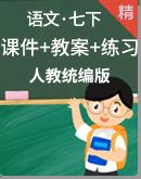 人教统编版语文七年级下册 同步课件+教案+练习